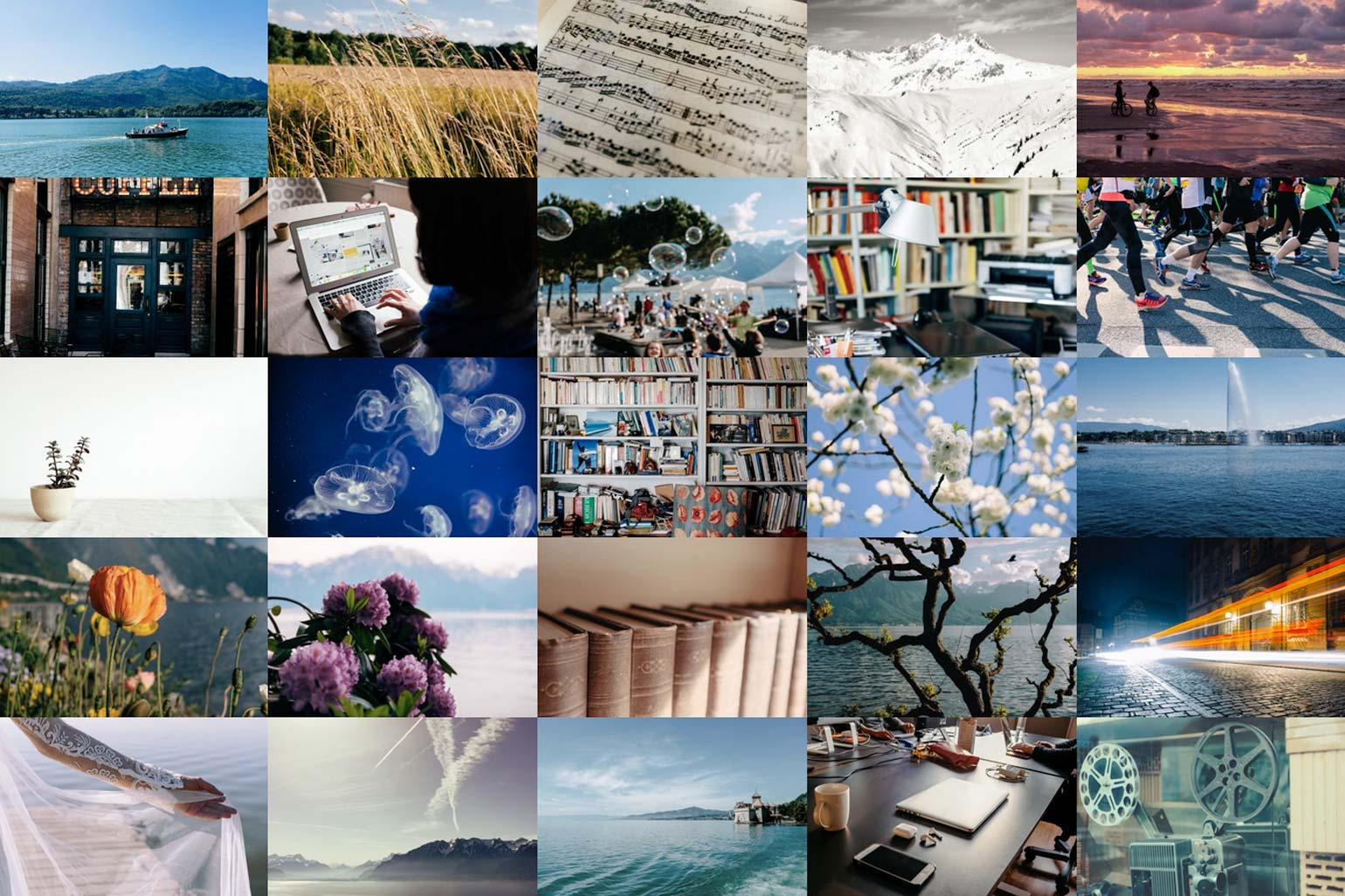 barnimages - best free images of 2019