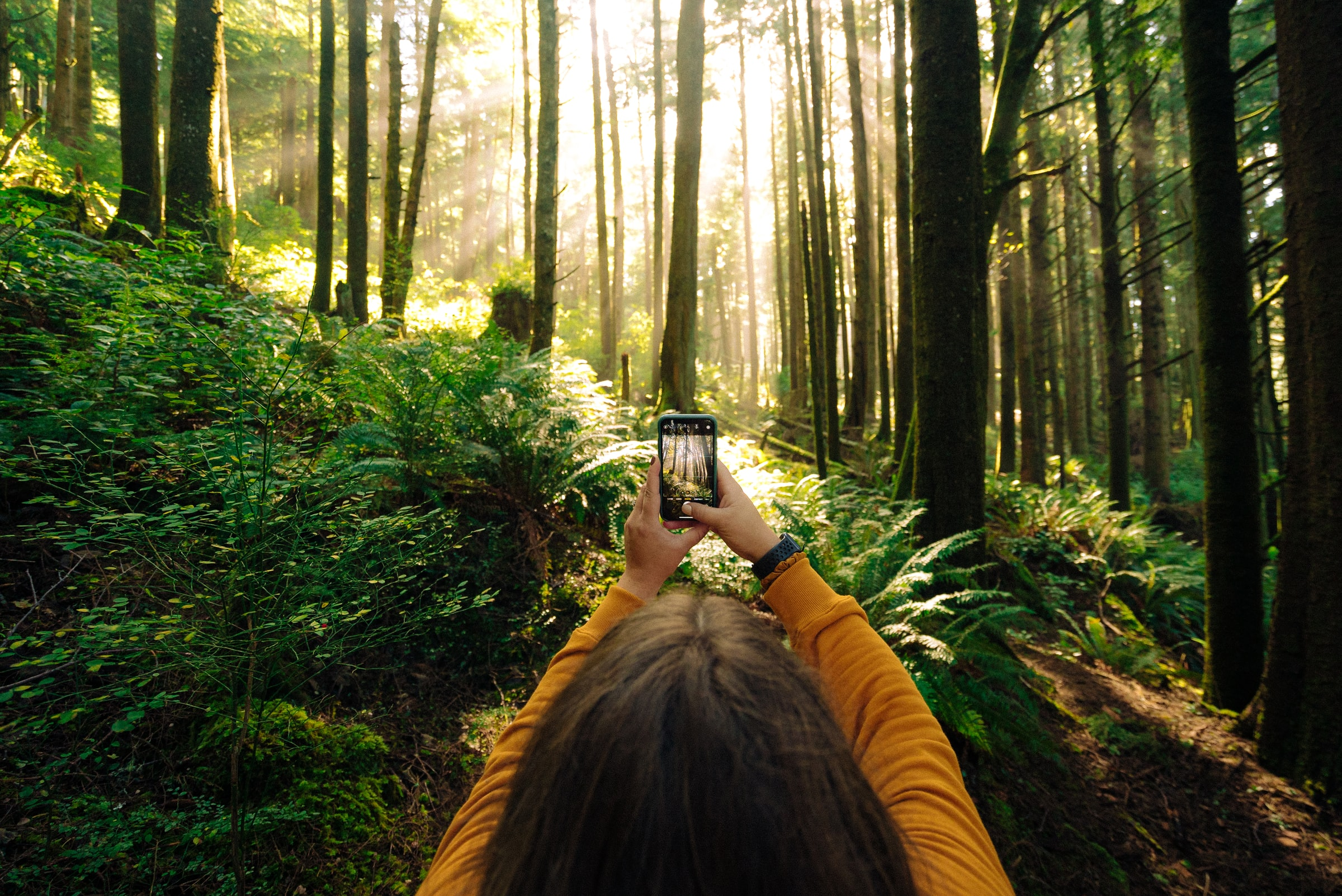 5 Instagram Apps to Make Your Visual Content Stand Out